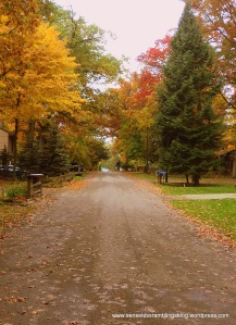 Autumn is: quiet country roads